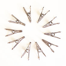 Super Strong Stainless Steel Clothes Pegs arranged in a circle