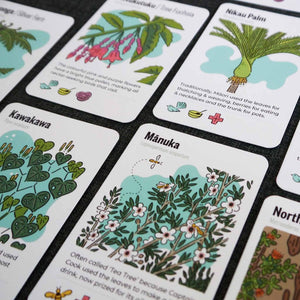 Close up of the Tree Snap cards featuring native trees