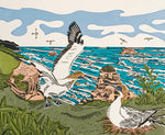 Art by Vivien Davimes - Gannets/Takapu at Muriwai A/P
