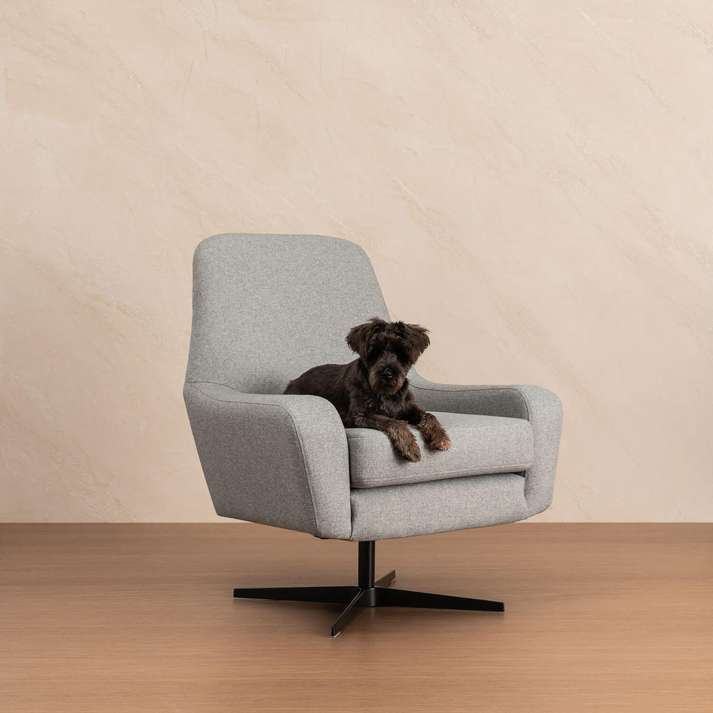 Knowledge Swivel chair