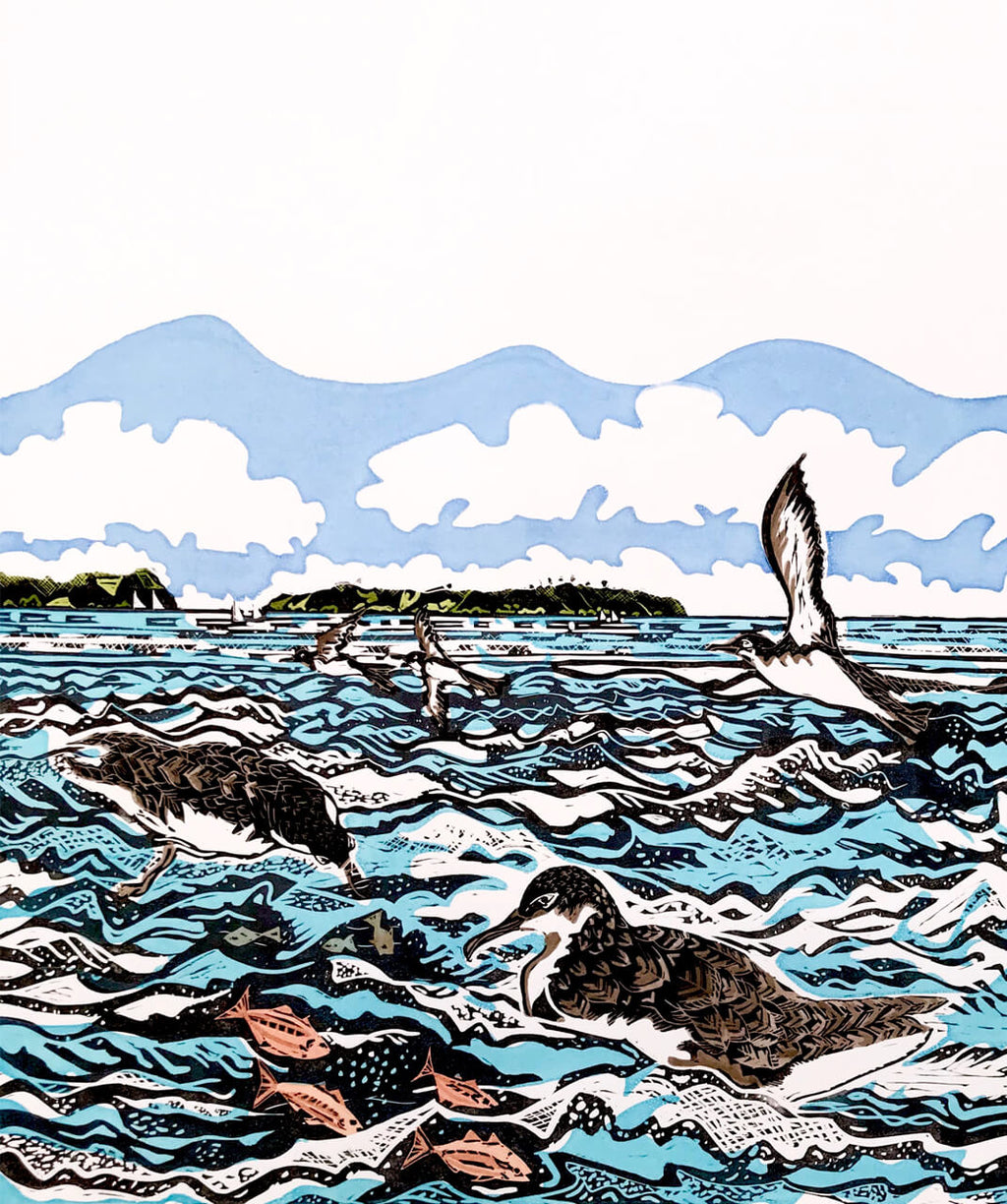 Art by Vivien Davimes - Shearwaters/Pakaha on the Hauraki Gulf 1/12