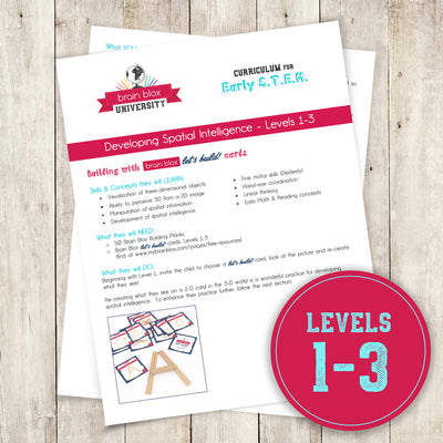 Developing Spatial Intelligence - Levels 1-3 (Curriculum)