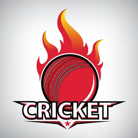 Come Join Cricket Social Hit at no cost on 3 March 2019 @ 4pm