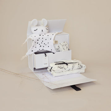 TheBabyBox Pregnancy Gift Box
