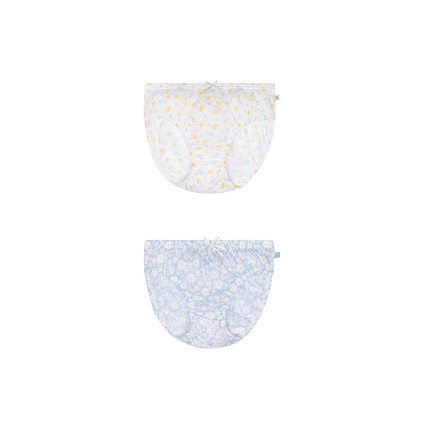 Dandelion Briefs 2 Pack