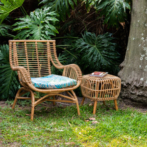 Sausalito Armchair Palms and Sacramento Side Table