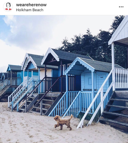 Opari Lifestyle Blog - Top UK Beach Huts Guide Dog Friendly travel