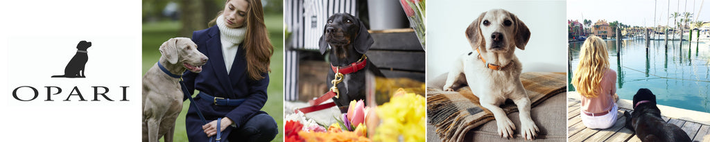 Opari Luxury gifts for dog lovers Christmas