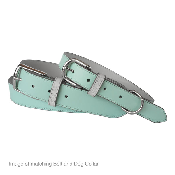 Beautiful Aqua Leather Dog Collar and matching Belt