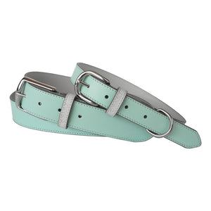 Aqua Leather Belt and Dog Collar