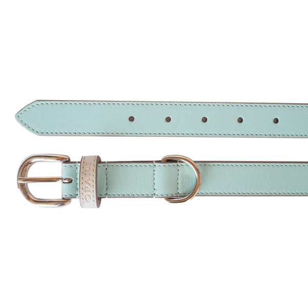 Beautiful Aqua Leather Dog Collar