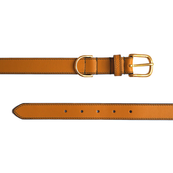 Ochre Yellow Leather Dog Collar by Opari