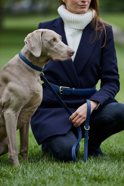 Navy Blue Leather Belt, Dog Collar and Lead by Opari. Twinning Matching