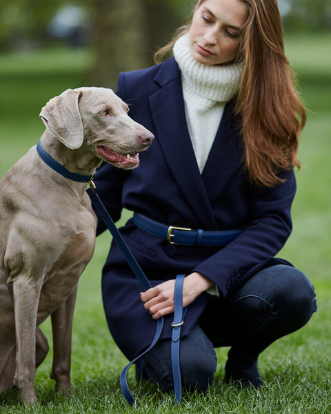 Twinning Navy Blue Leather Belt and matching Dog Collar by Opari