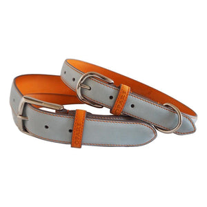 Sky Blue Leather Belt and Dog Collar