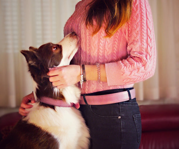 Raspberry Leather Belt and Dog Collar