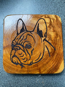 Coaster - French Bulldog