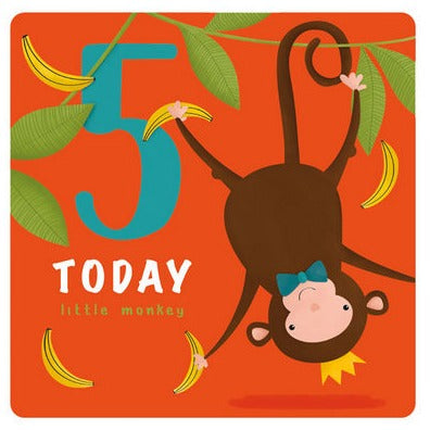 The Art File Greeting Card - Age Collection, 5th Monkey