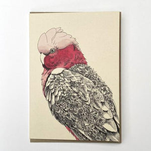 Marini Ferlazzo Greeting Card - Birds of Australia Collection, Galah