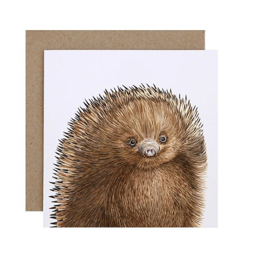 Eddie the Echidna Greeting Card | For Me By Dee | Paperpoint Stationery South Melbourne
