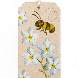 Seeds Gift Tag - Forget Me Not | Sow n Sow | Paperpoint Stationery South Melbourne