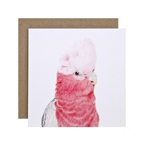 Gary the Galah Greeting Card | For Me By Dee | Paperpoint Stationery South Melbourne