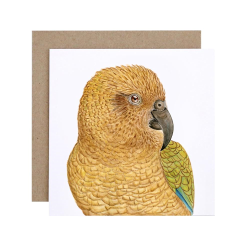 For Me By Dee Greeting Card - Kai the Kea