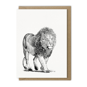 Marini Ferlazzo Greeting Card -  African Lion | Marini Ferlazzo | Paperpoint Stationery South Melbourne
