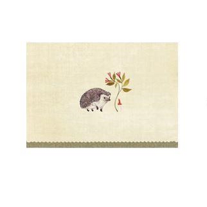 Note Card Set - Hedgehog | Peter Pauper Press | Paperpoint Stationery South Melbourne