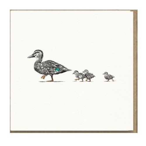 Marini Ferlazzo Greeting Card - Ducklings