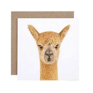 Alice the Alpaca Greeting Card | For Me By Dee | Paperpoint Stationery South Melbourne