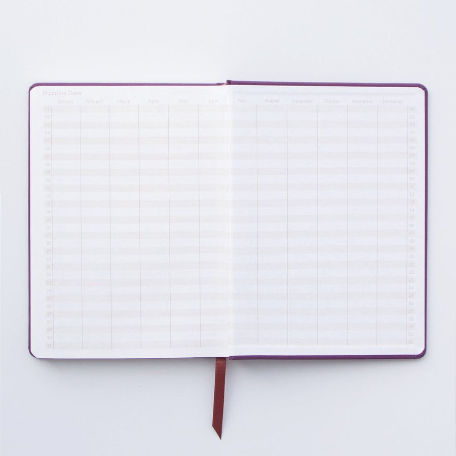 Designworks Small Notebook - Ta - Da Starburst | Designworks | Paperpoint Stationery South Melbourne
