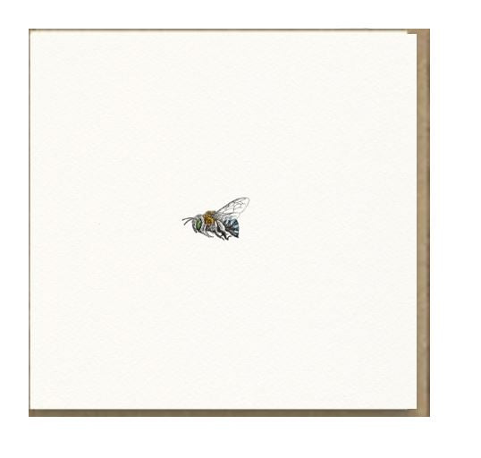 Marini Ferlazzo Greeting Card - Blue Banded Bee