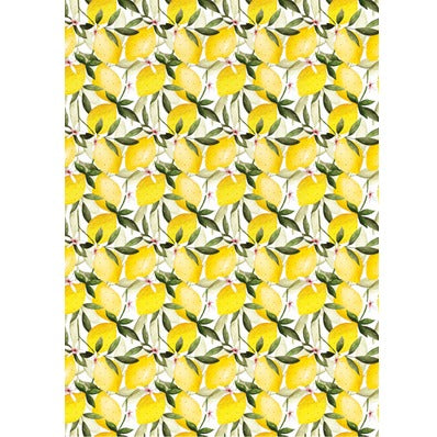 The Art File Gift Wrap - Lemons (Click & Collect Only - Cannot be Shipped)