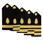 NAVY AS-IS Men's O1-O6 Hard Shoulder Board: Dental Corp