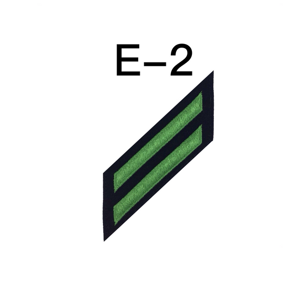 NAVY E2 & E3 (AE) Combination Rating Badge: Aviation Electricians Mate - SDB