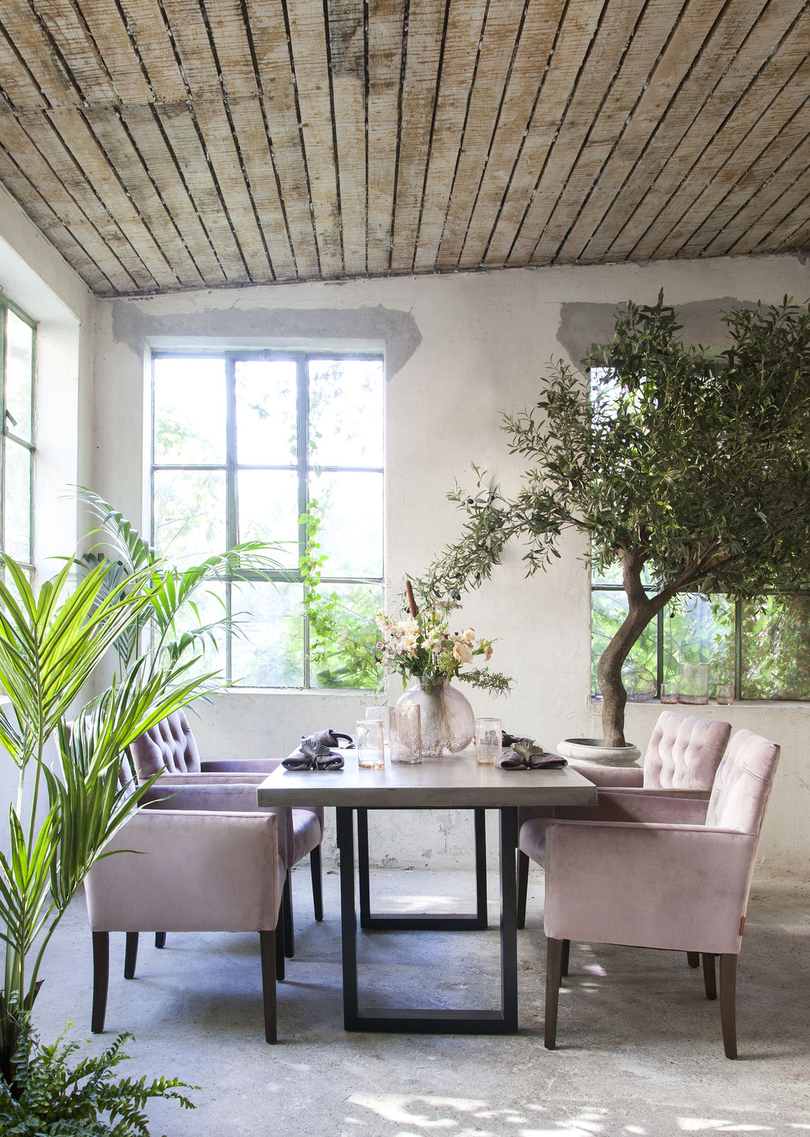 Dusky pink velvet dining chairs on wooden legs around concrete table on metal legs