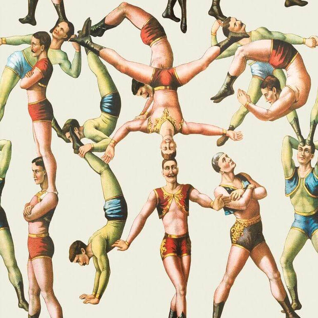 Acrobats Wallpaper