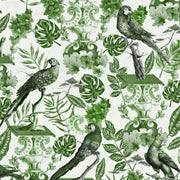 Green Parrot Wallpaper