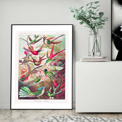Exotic birds colourful art print