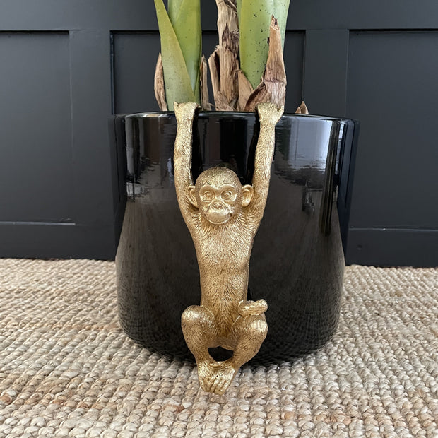 Gold monkey plant pot hanger with it's arms up