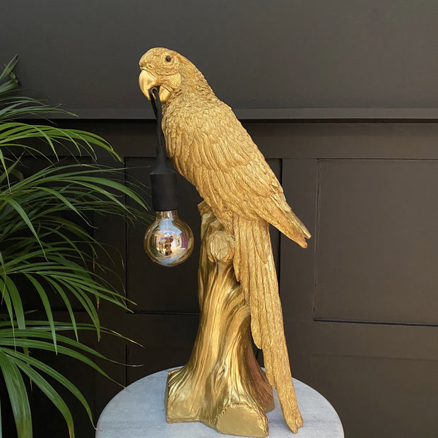 Gold parrot table lamp with a bulb hanging from it's mouth