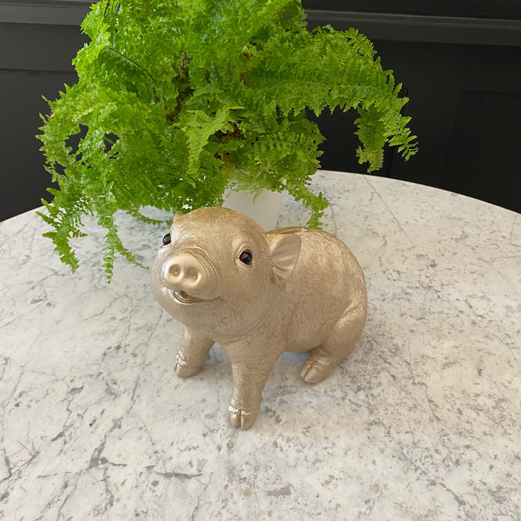 Champagne gold piggy bank