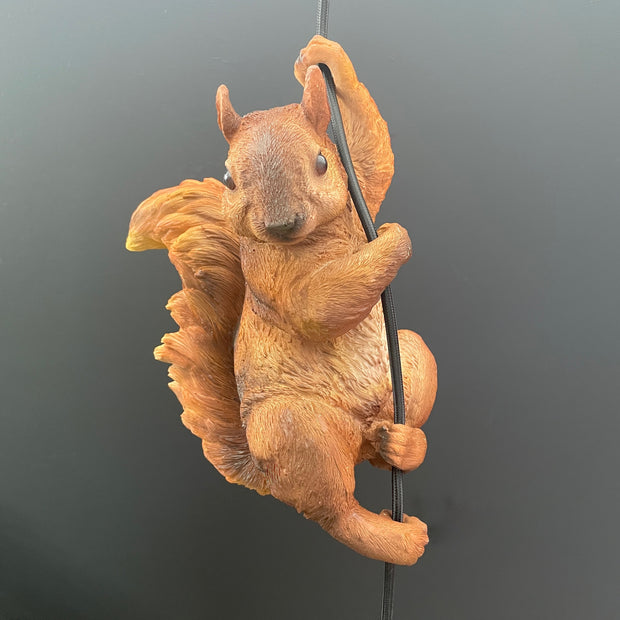Squirrel pendant ceiling light hanging off the cable
