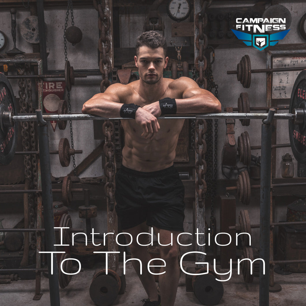 Introduction To The Gym Program