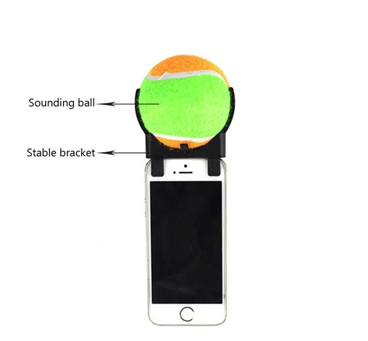 Tennis Ball Dog Selfie Stick