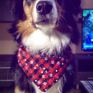 Themed Dog Bandana's
