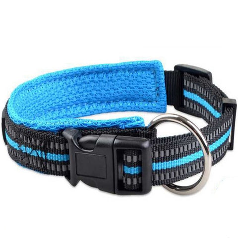 Padded Reflective Collar *2018*