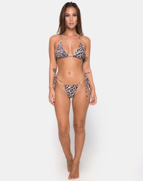 Mone bottom Bikini in Original Cheetah by Motel