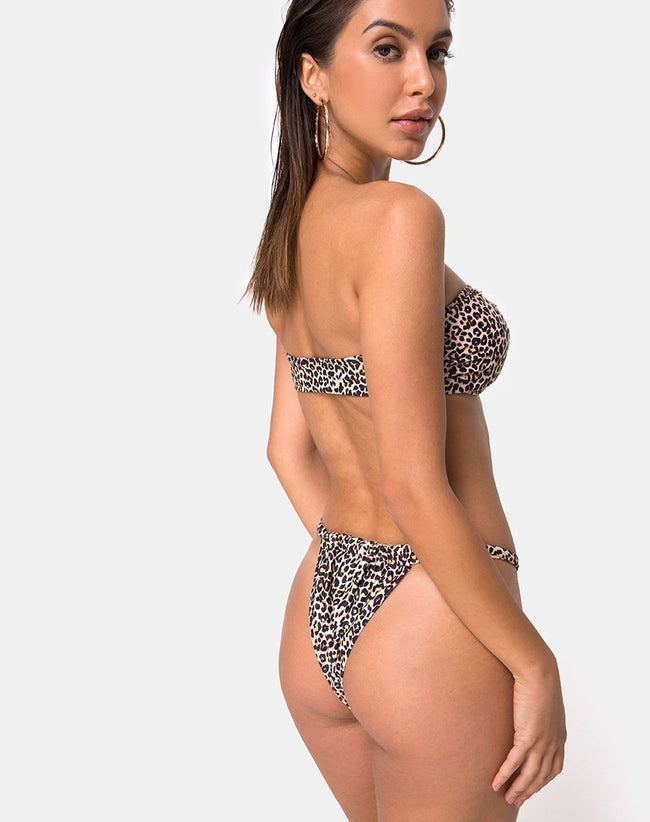 Nevada Bikini Top in Rar Leopard by Motel